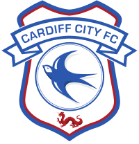 Cardiff City Banner.png