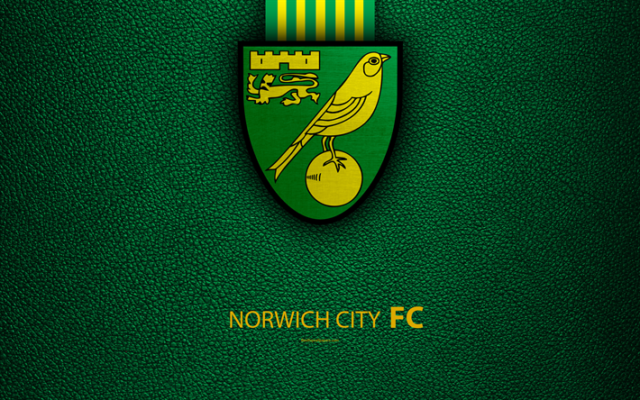 Norwich Banner.png